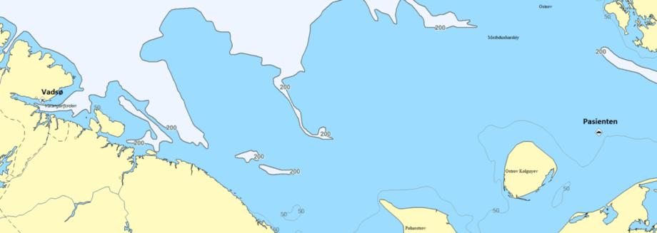Kartet viser distansen mellom pasienten og Vadsø. Skjermdump: HRS Nord-Norge