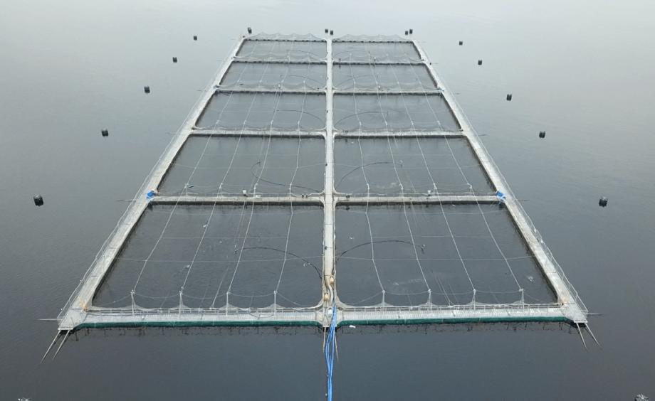 Centro de cultivo de salmónidos de AquaChile. Foto: AquaChile.