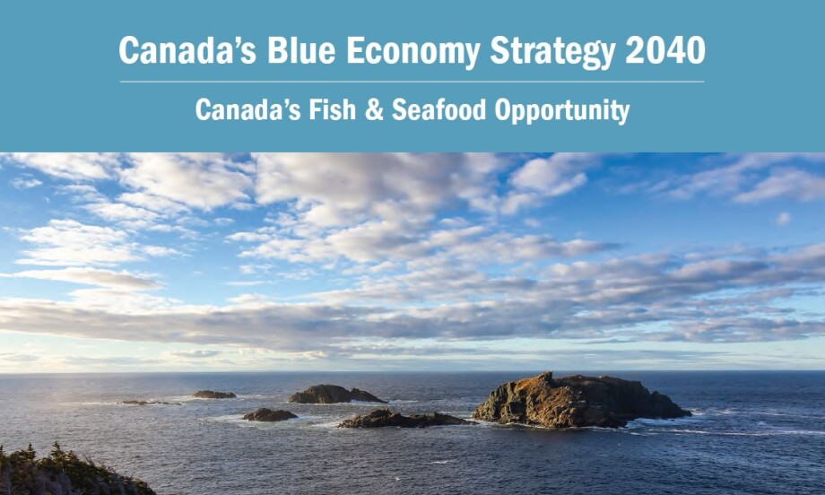 The Canada's Blue Economy Strategy 2040 document contains a number of recommendations for the federal government.