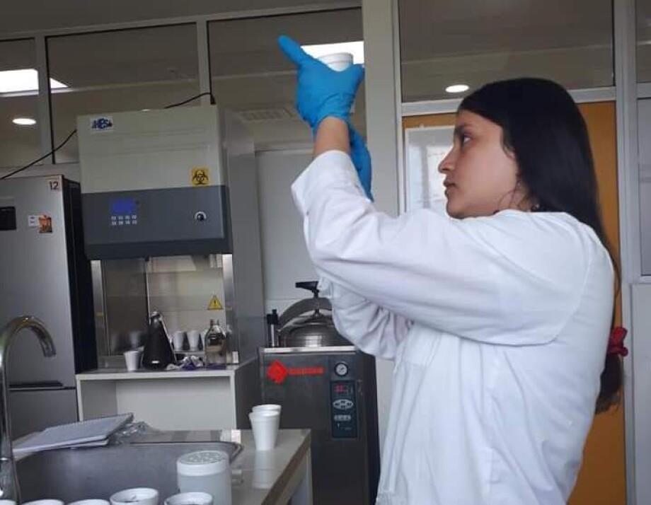 El programa tiene dos líneas de investigación: biodiversidad y biorecursos. Foto: UCSC.