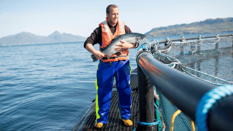 A Mowi salmon farm off Muck, Scotland. The company has topped a sustainability index for the second year running. Photo: Mowi.