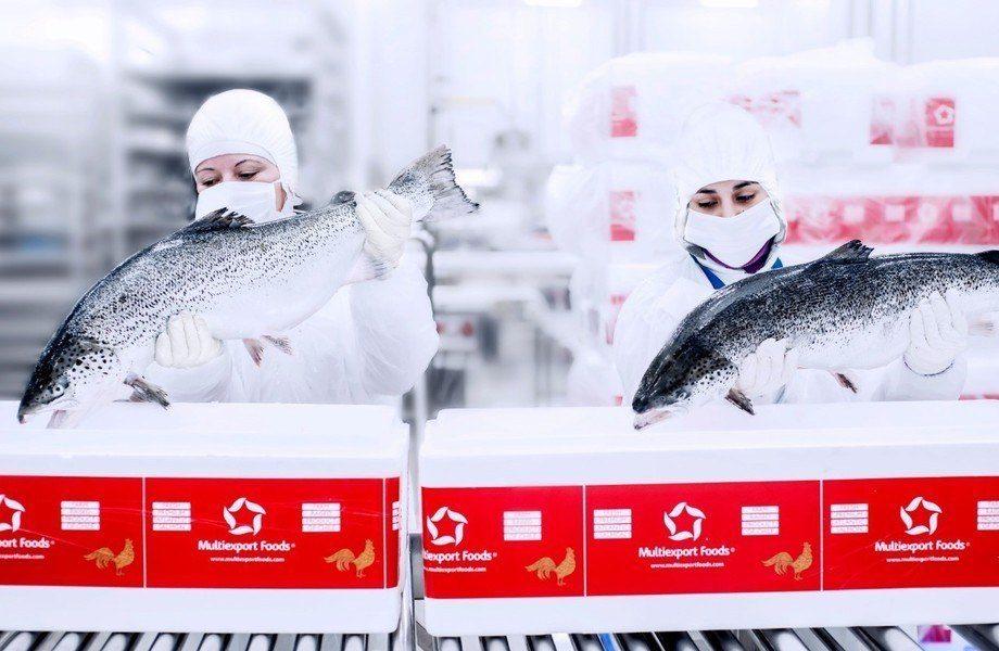 La salmonicultora chilena logró este reconocimiento por segundo año consecutivo. Foto: Multiexport Foods.