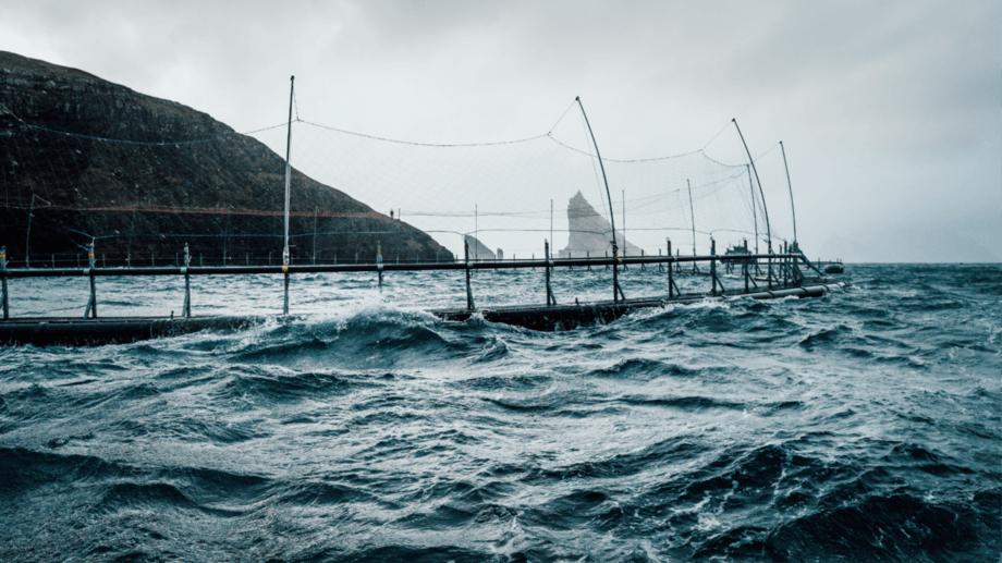 A HiddenFjord net pen in the Faroe Islands. Photo: HiddenFjord.