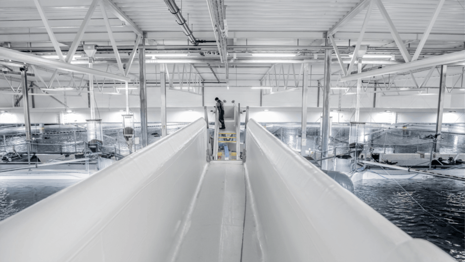 An AKVA group RAS facility. The Norwegian company will supply equipment for phase 1 of Nordic Aqua Ningbo Co's plant in China. Photo: AKVA group.
