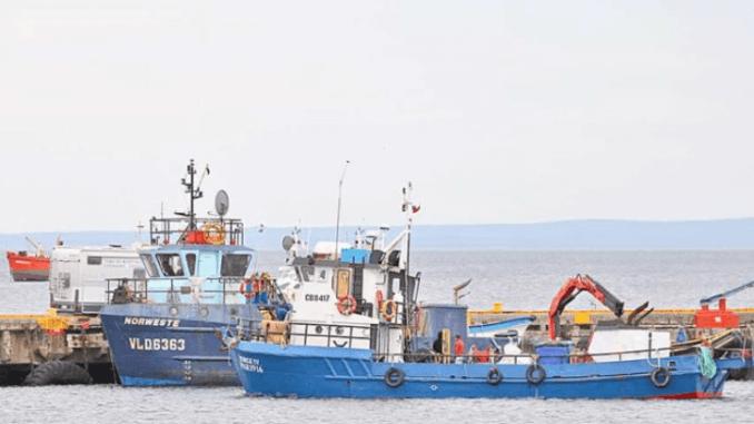 Afectados trabajan en embarcaciones que prestan servicios a la industria. Foto: La Prensa Austral.