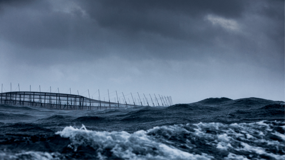 Huon's Fortress Pens are designed to keep seals out and fish in at high energy sites such as Storm Bay. Photo: Huon Aquaculture.