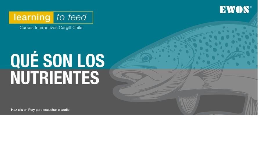 Imagen: Cargill Chile.
