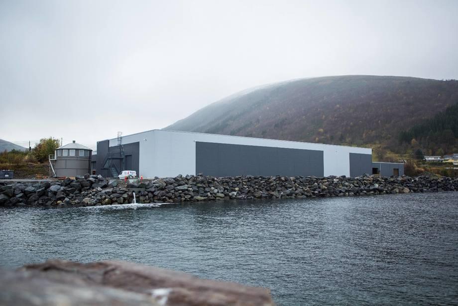 AquaGen sitt landbaserte stamfiskanlegg Profunda i Barstadvik i Ørsta kommune. Foto: Matias Myklebust