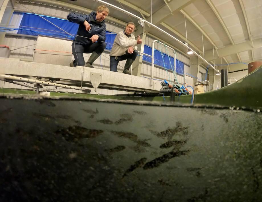 Daglig leder Halvard Hovland sammen med Bjørn Lillelien som har gjort arbeidet som kreves for å sikre konsesjon. Foto: Eivind Hauge.