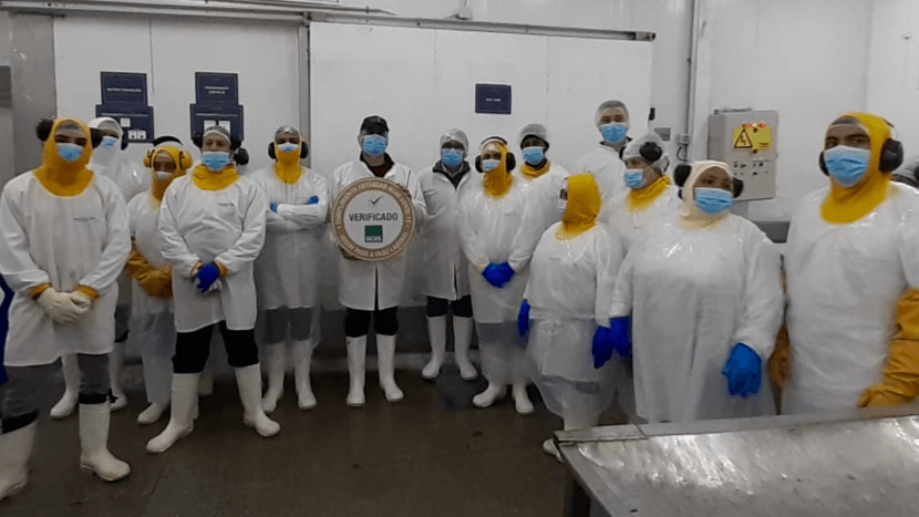 Masked workers at AquaChile's Magallanes processing plant with their Covid Seal. Photo: AquaChile.