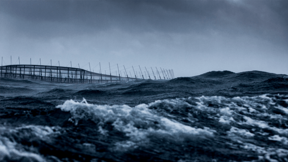 A Huon Fortress cage in Storm Bay, Tasmania. The company is growing more fish but selling them for less than in FY2020. Photo: Huon.