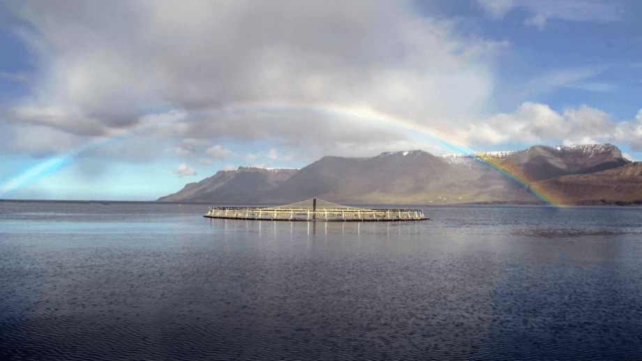 An Arctic Fish site in Iceland's western fjords. The company is raising money for expansion.