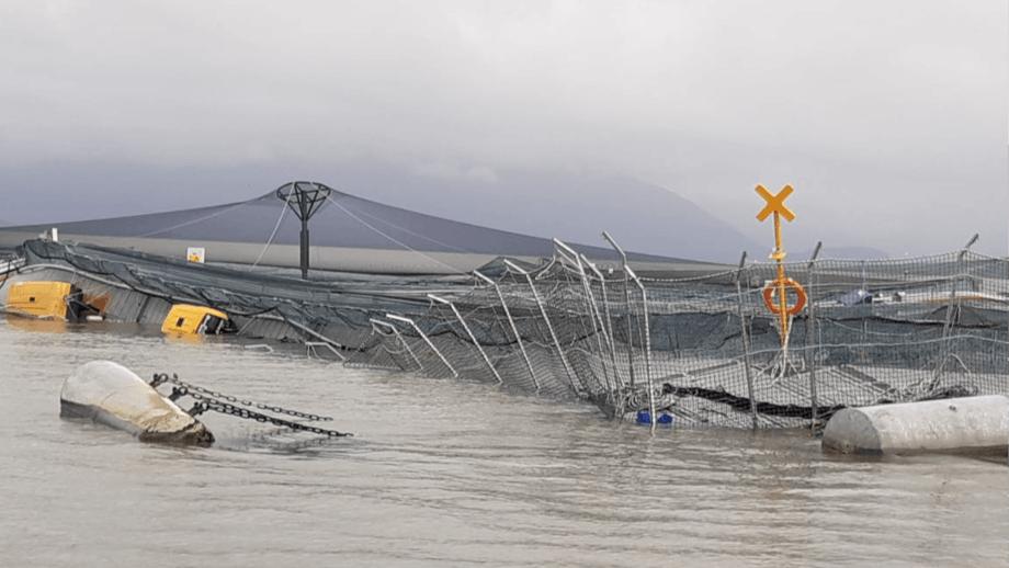 A damaged salmon farm in Chile. Photo: Directmar.