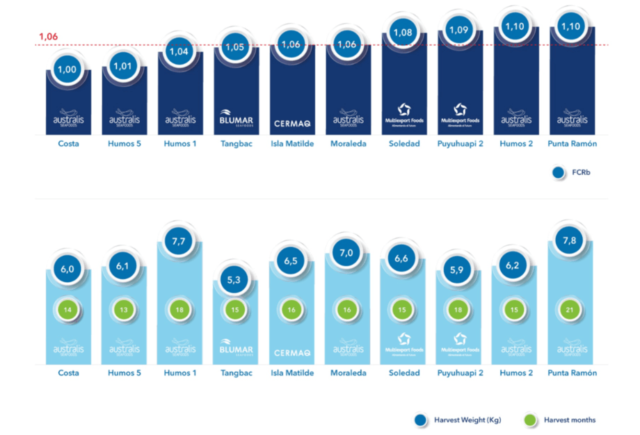 A graphic showing the top 10 farms using BioMar Chile's high energy feeds. The top line shows biological feed conversion ratio (lower is better) and the bottom line shows harvest weight (blue circle) and time spent at sea (green circle). Graphic: BioMar.