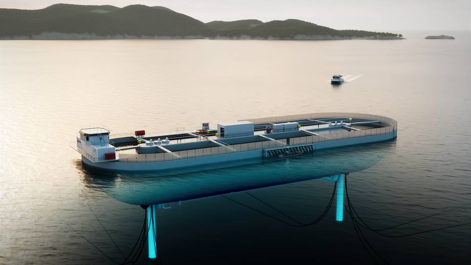 An illustration of the Stadion Basin, a floating, closed, through-flow salmon farm due in 2023. Illustration: NagellD AS.