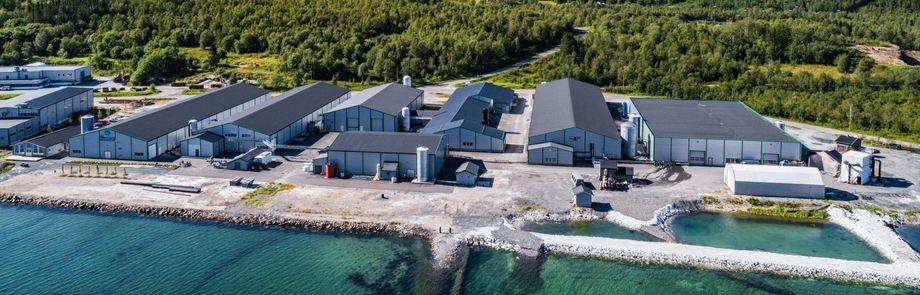 Oversiktsbilde av Sisomar-fabrikk. Foto: Sisomar AS