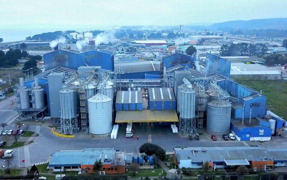 Fueron 8 proyectos ganadores en las comunas de Coronel y Calbuco. Imagen: Cargill.