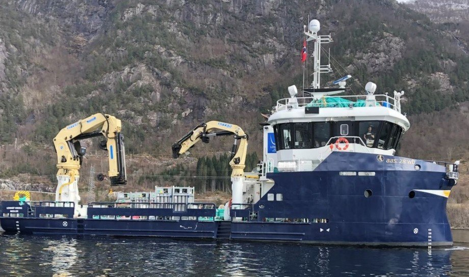 Servicebåten Lovart Viking skal oppgraderes og blir utstyrt med Optimar sin nye bløggerobot, som kan prosessere inntil 25 tonn fisk per time. Foto: FMV.