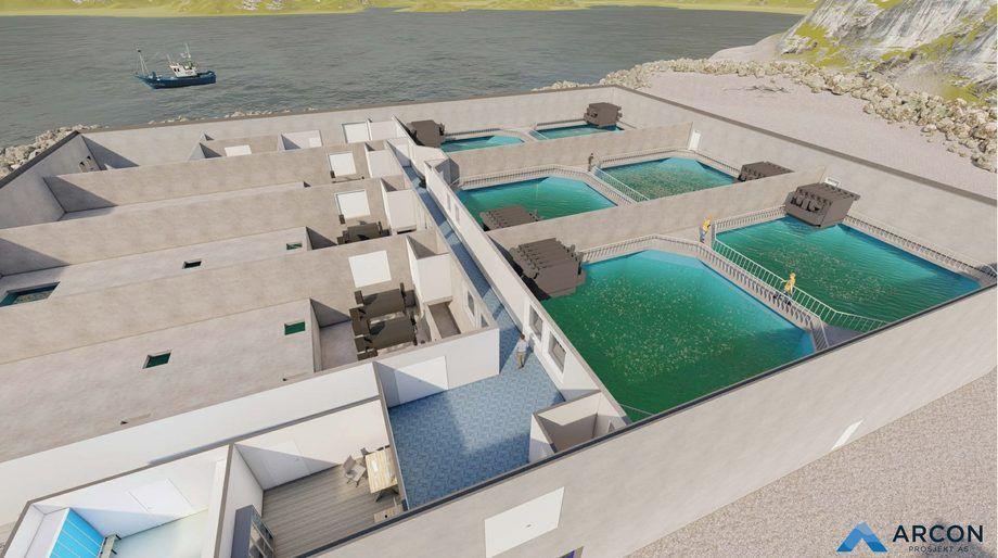 Perspektivillustrasjon av det nye settefiskanlegget i Nordfjord. Illustrasjon: Arcon Prosjekt AS