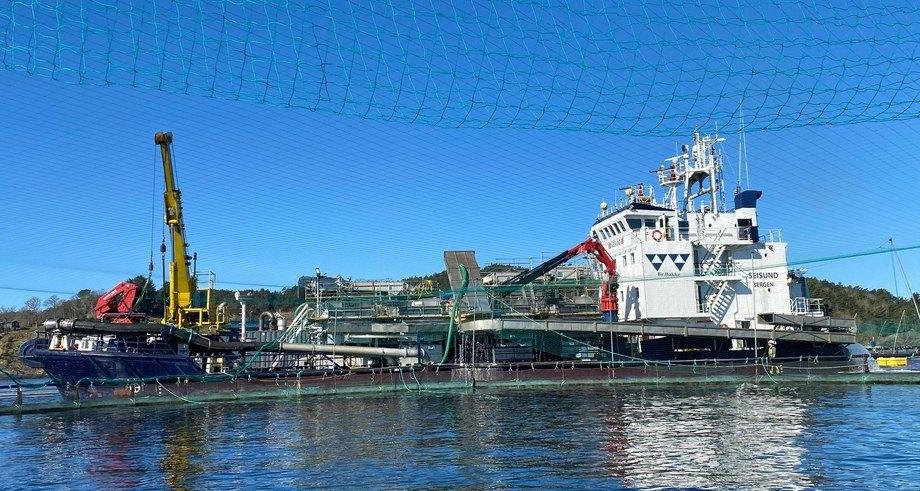 Forsøkene ble utført på båten Seisund som er utstyrt med fire Optilicerenheter og fire Optispylere plassert like etter Optiliceren. Foto: FoMAS