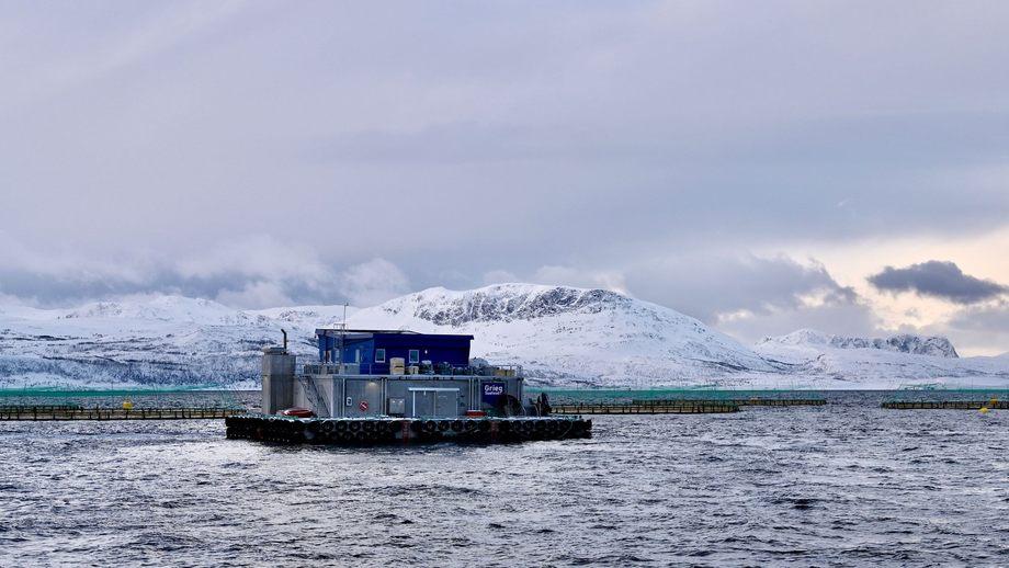 Det er mistanke om ILA på lokalitet Stangnes i Akkarfjorden ved Kvaløya. Foto: AKVA group