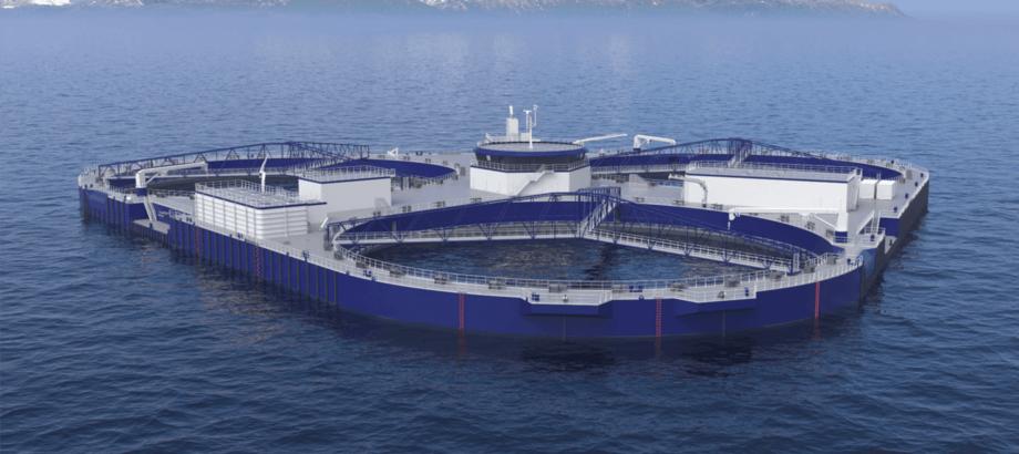 Ilustración de FjordMAX. Imagen: NSK Ship Design.