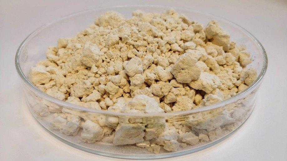 EniferBio produce una micoproteína mediante un método que dejó de utilizarse cuando cambiaron los métodos de producción de pulpa. Foto: EniferBio.
