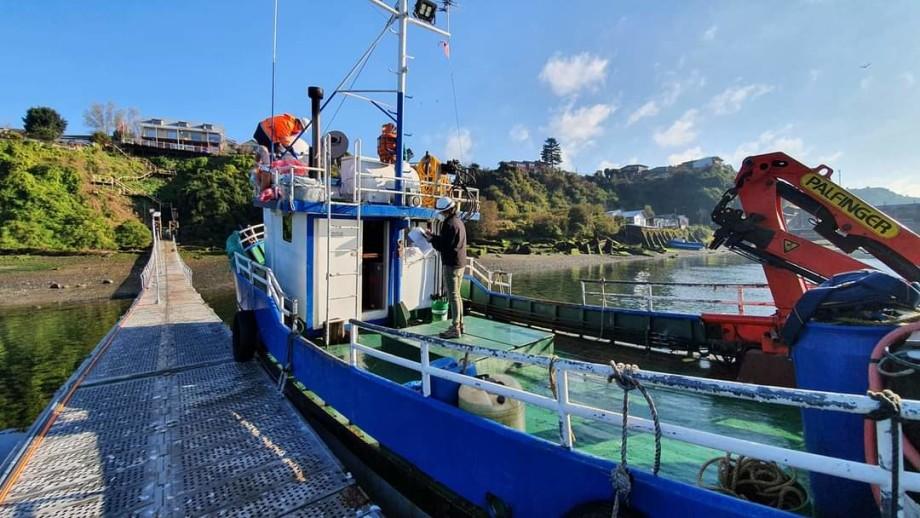 La compañía asesora principalmente a armadores dueños de embarcaciones menores y mayores. Foto: Lobo Marine Solutions.