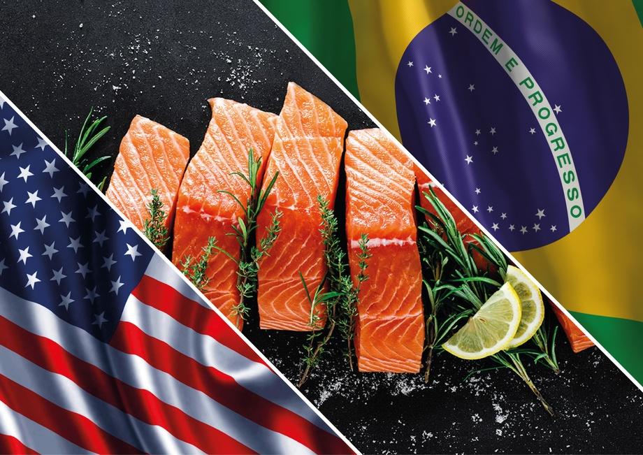 Al quinto mes del año, el valor de envíos de salmónidos a Estados Unidos y Brasil fue de US$ 875 millones y US$ 254 millones, respectivamente. Imagen: Archivo Salmonexpert.