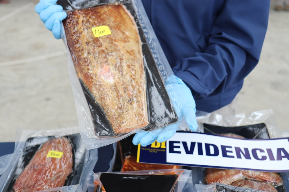 Salmón de mortalidad era procesado y luego vendido como ahumado en el mercado de Angelmó. Foto: PDI Los Lagos.