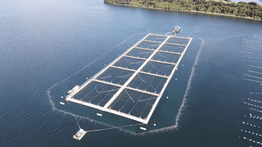 A salmon farm in Chile protected by a bubble barrier. A system adapted for Irish Sea conditions is to be tested at two farms in Ireland under a contract with Ireland's seafood development agency, Bord Iascaigh Mhara. Photo: Low O2 / PSP Soluciones.