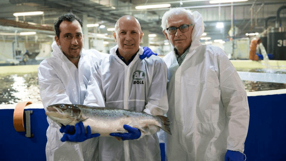 Members of the AquaMaof team at a RAS facility in Poland that it co-owns with one of its customers, Pure Salmon. RFC cited AquaMaof's experience in growing fish to harvest size as a reason for choosing the company. Photo: AquaMaof.