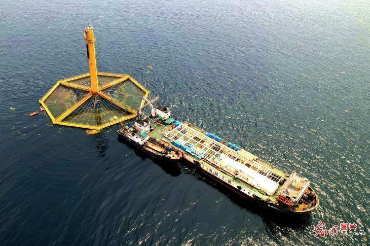 Barco de cultivo de salmón en alta mar que también posee sala de procesamiento. Foto: News.bandao.cn