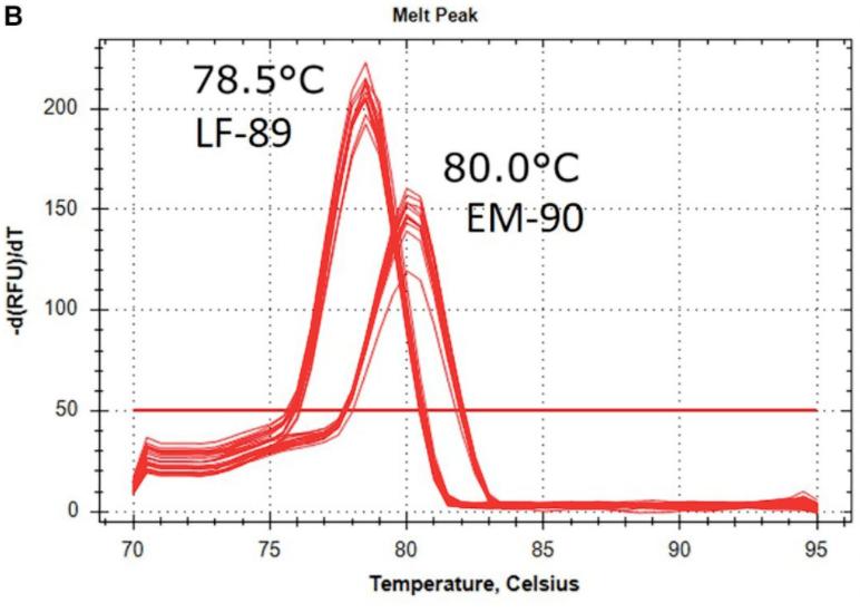 Caracterización del prototipo Multiplex-1 mediante qPCR. Temperatura de Melting del amplicón de los aislados de tipo LF-89 y EM-90. Fuente: Modificado de Isla y col., 2021.