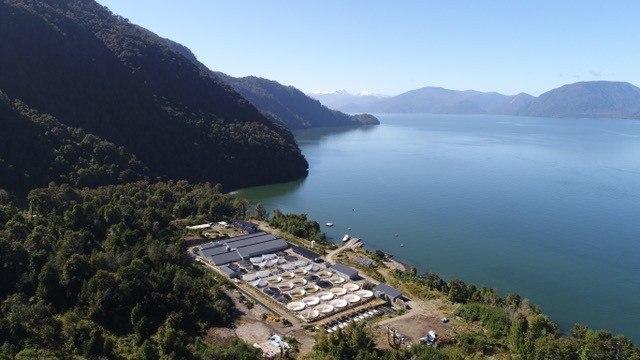 Imagen aérea de PFA. Imagen: Mowi.