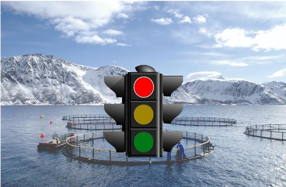 Nuevo sistema regulará el crecimiento de la producción en Noruega. Foto: The Norwegian Seafood Council.