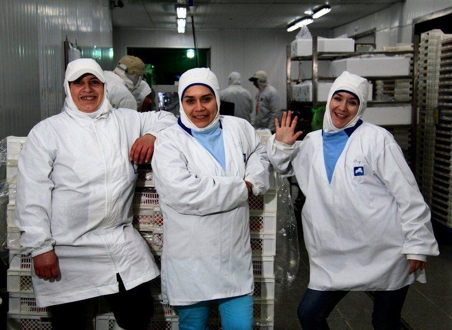 Según cifras del Instituto Nacional de Estadísticas (INE), alrededor del 3% de la fuerza laboral de la industria del salmón de Chile está compuesta por mujeres. Imagen: SalmonChile.