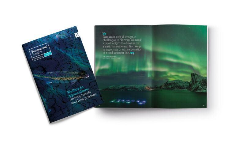 Imagen referencial de la segunda edición de la publicación Benchmark Insights.