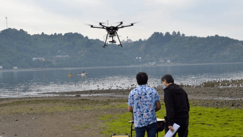 Researchers will use a hyperspectral camera mounted on a drone to spot potential HABs. Photo: I-mar, University of Los Lagos.