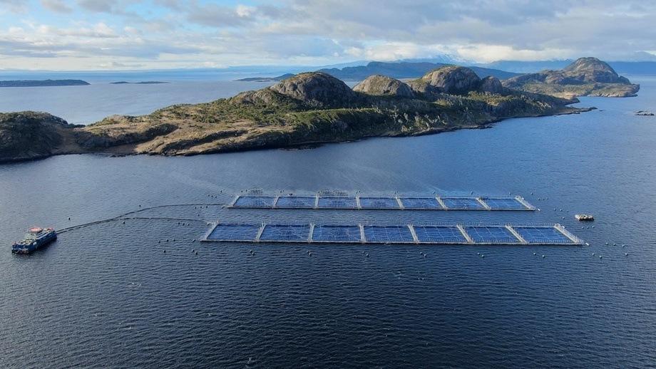 Abastecimiento de todas las operaciones de la compañía son con energías renovables no convencionales. Foto: Blumar.