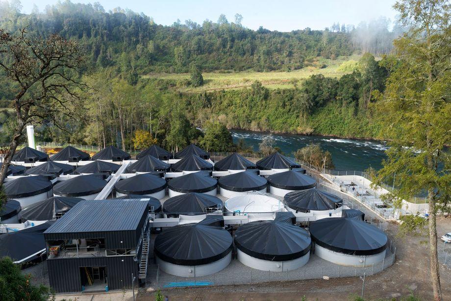 Nuevo reglamento para pisciculturas evitará que los lodos lleguen a rellenos industriales. Foto: Ecosalmon.