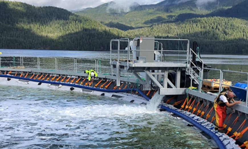 Cermaq's floating closed containment facility in Millar Channel on the west coast of Vancouver Island is among the innovations featured in the BCSFA report. Image taken from the report.