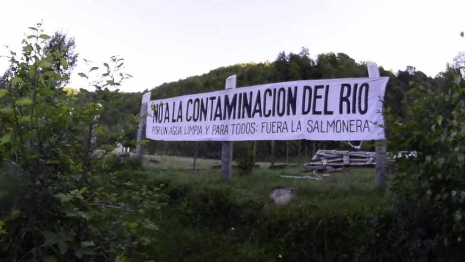 Comunidades aledañas a piscicultura estaban en contra del proyecto por afectar espacios ceremoniales mapuche. Foto: Diario UChile.
