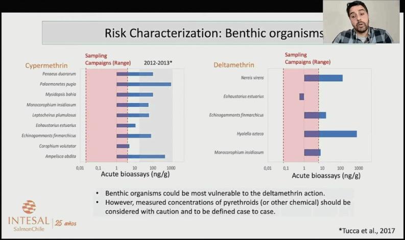 Los organismos bentónicos podrían ser los más vulnerables a la acción de deltametrina. Fuente: Presentación Felipe Pucca.