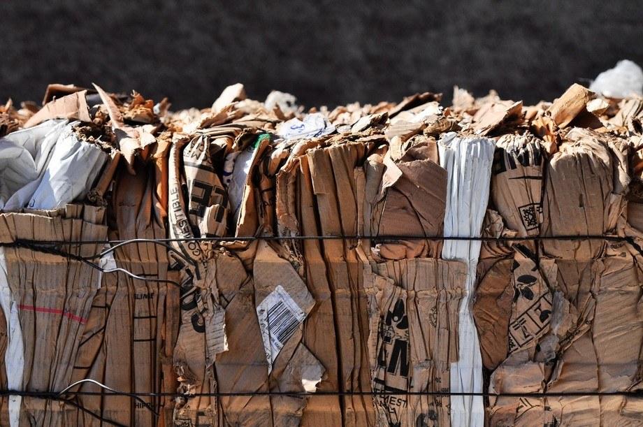 Software de EcoLógica abarca la trazabilidad de una serie de residuos industriales. Foto: EcoLógica.