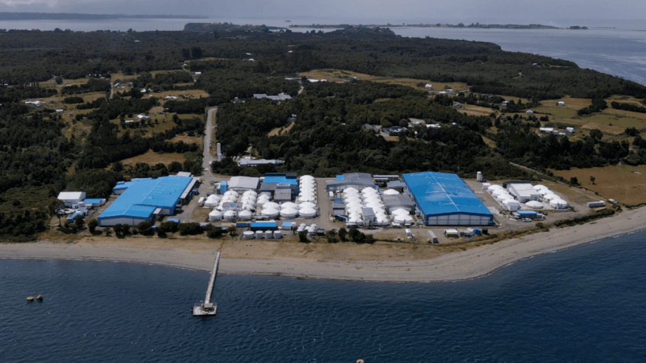 Sealand's RAS facility in southern Chile. Photo: Sealand Advanced Aquaculture.