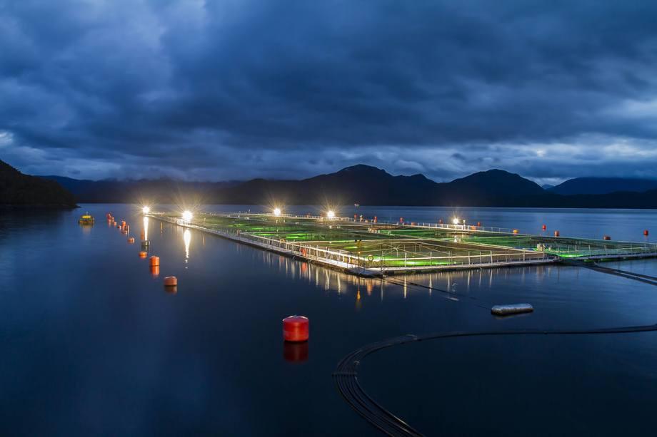 Centro de cultivo de salmón de Blumar. Foto: Blumar.