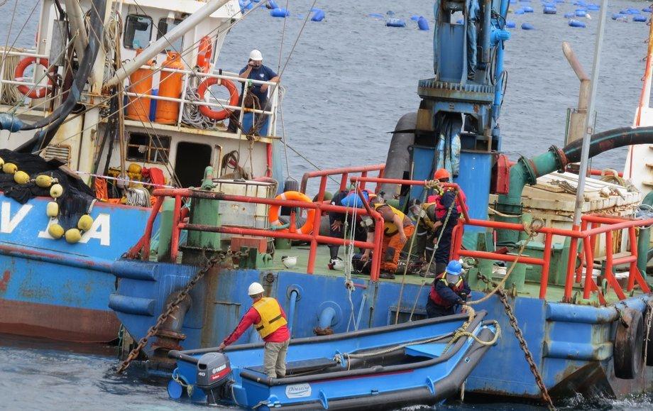 Empresa simulará rescate de dos trabajadores bajo cubierta producto de la inhalación de ácido sulfhídrico. Foto: Fiordo Austral.