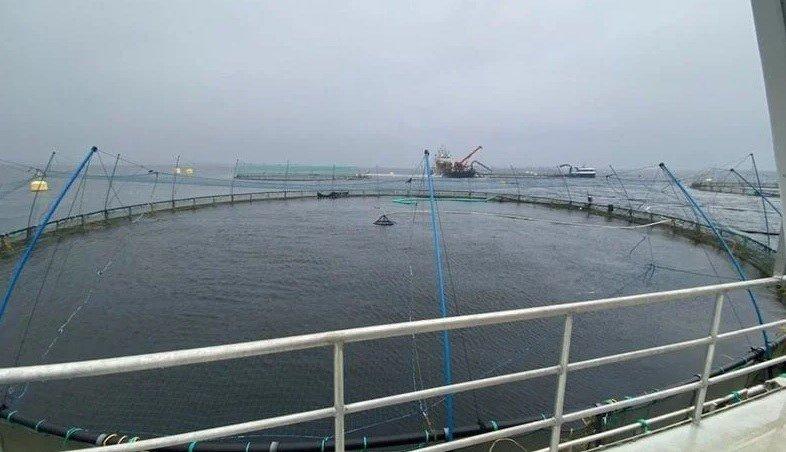 Det skjedde i ettermiddag en dykkerulykke ved Eide Fjordbruk sin lokalitet Langøy i Nordhordland. Foto: Nordhordland brann og redning.