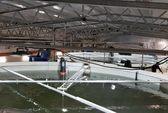 Firda Seafood Group har fått konsesjon til vannuttak i Gulen kommune